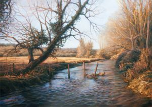Meon River in Winter