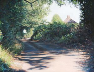 Cut Throat Lane, Swanmore