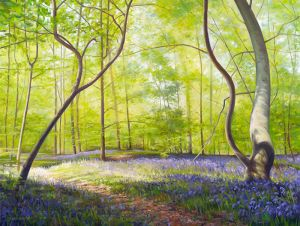 Bluebell Wood, Forest of Bere